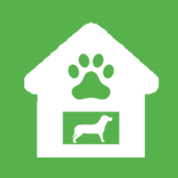 Dog Hostel,Pet Resort,Dog Resort,Dog Day Care,Dog Stay,Dog Hostels