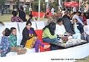 2013 Agra Dog Show | people,sw-78,