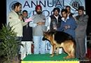Amritsar Dog Show 2012 | german shepherd,line up,sw-65,