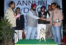 Amritsar Dog Show 2012 | line up,pug,sw-65,