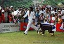 Chennai Dog Shows | chennai dog shows