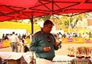Nagpur Canine Club | people,sw-137,