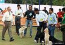 Orissa Dog Show | golden retriever,judging,sw-68,