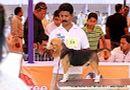 Orissa Dog Show | beagle,ex-39,sw-68,