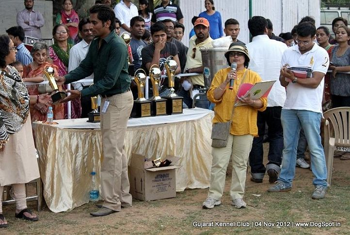 sw-64, lineup,people,sw-64,waiting ring,, Baroda Dog Show 4th Nov 2012, DogSpot.in