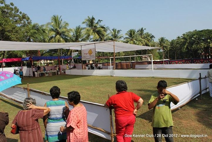 show ground,sw-63,, Goa 2012, DogSpot.in