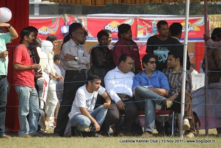 lucknow dog show 2011, Lucknow Dog Show 2011, DogSpot.in