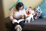 4 Reasons Why Establishing A Routine For Your Dog Is Important Right From PuppyHood