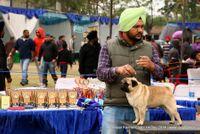 Amritsar Kennel Club