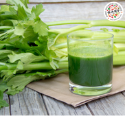 Dog Nutrition: Can you feed your dog celery?