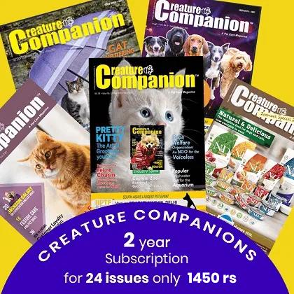 Creature Companion