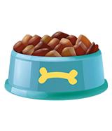 Dog Bowls & Feeder