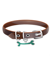 Dog Leash Collar & Harness