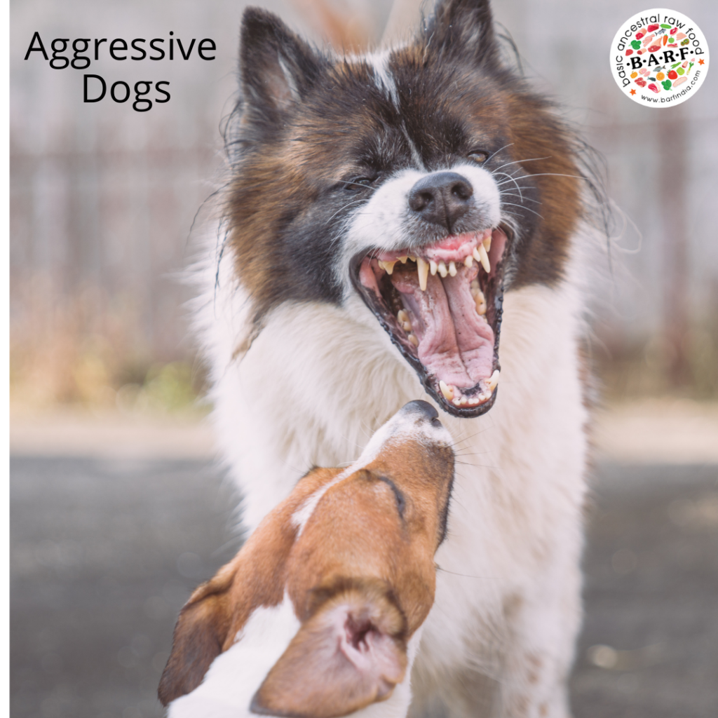 Raw diet leads to aggression - Myth or Fact - Read for insights
