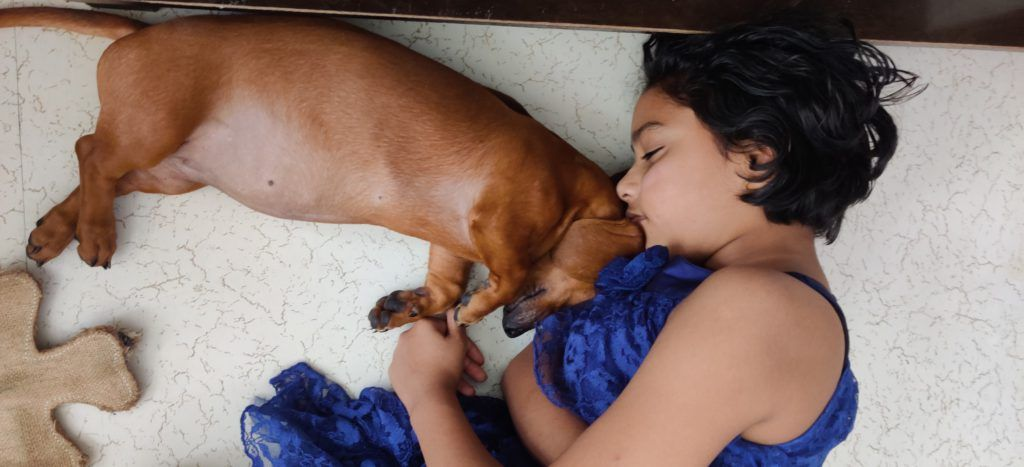 Top 8 questions to know if your kids are ready for a dog
