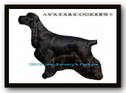AVATAR English Cocker Spaniel Kennel
