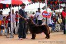 APKC Hyderabad | sw-11,ex-182,newfoundland,