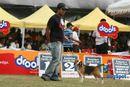 Bangalore 2010 | beagle,ex-101,sw-12,