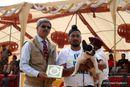 Chandigarh Kennel Club | ex-41,french bull dog,sw-110,
