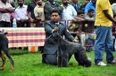 Kodaikanal Dog Show 2010 | kerry blue,