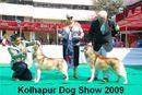 Kolhapur 2009 | huskie,siberian huskie,