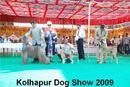 Kolhapur 2009 | group judging,