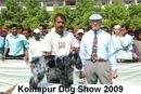 Kolhapur 2009 | cocker,