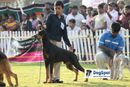 Ooty Dog Show 2010 | sw-18, child handler,