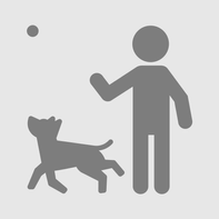 Happy Puppy Organics Shiny Fur Spa Oil- 100ml