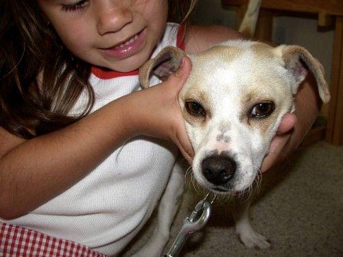 Fear-Aggression-Scared-Dog-With-Kid-lantzilla