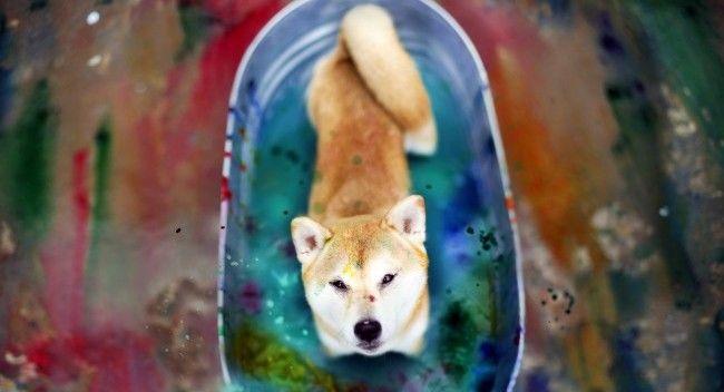 Color-Bath