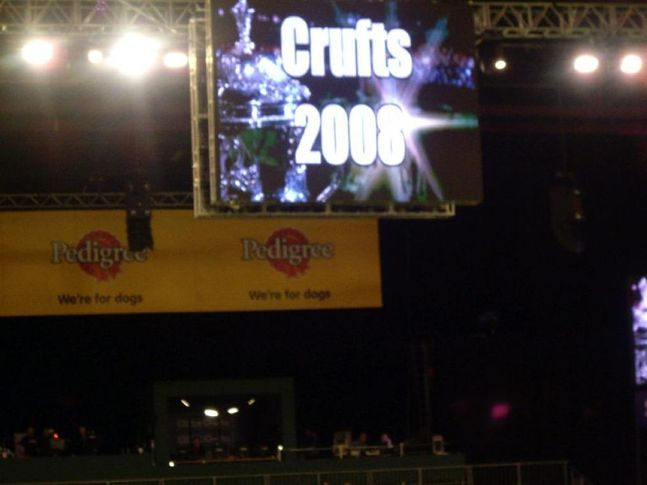 crufts 2008 , crufts 2008, DogSpot.in