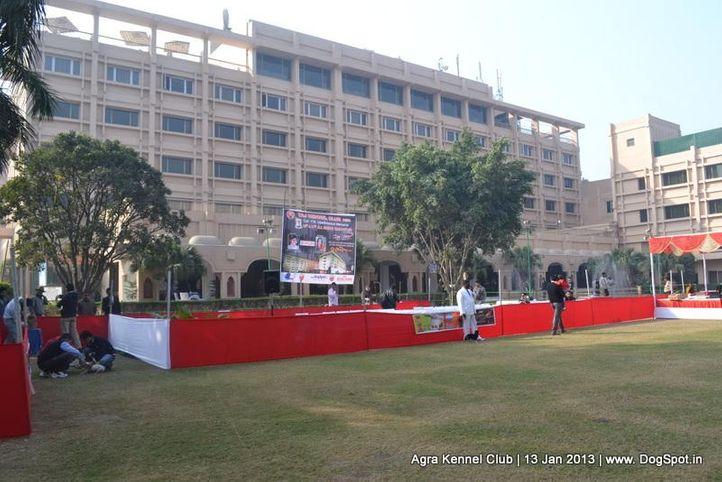 show ground,sw-78,, 2013 Agra Dog Show, DogSpot.in