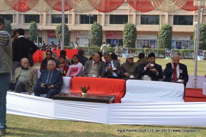 ground,sw-78,, 2013 Agra Dog Show, DogSpot.in