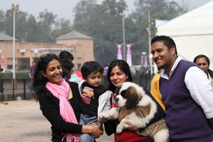 Dog Show,Dogs,Obedience Show,, 4th IIPTF 2010, DogSpot.in