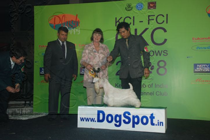 5FCILineUp,Day1,, 5th & 6th FCI KCI International and 7th & 8th GKC Championship Dog Show 2008, DogSpot.in