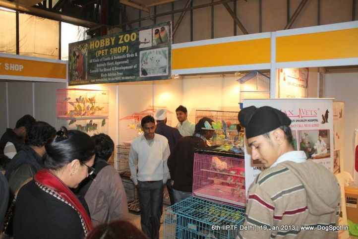 6th iiptf delhi,hobby zoo,, 6th IIPTF Delhi , DogSpot.in