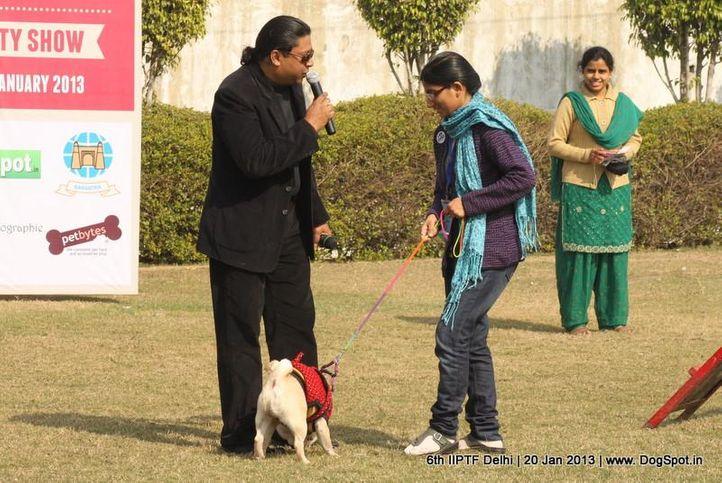 6th iiptf delhi,fun and games,, 6th IIPTF Delhi , DogSpot.in