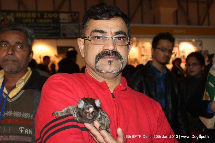 6th iiptf delhi,people,, 6th IIPTF Delhi , DogSpot.in