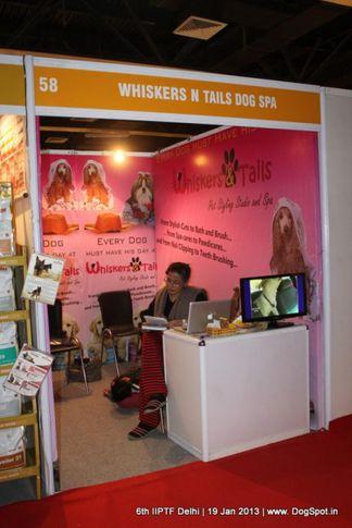 6th iiptf delhi,whiskers,, 6th IIPTF Delhi , DogSpot.in