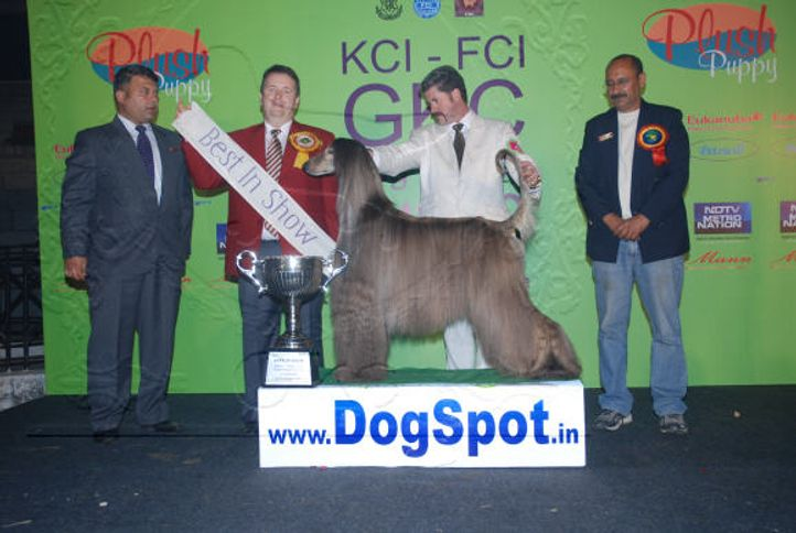 7thGKCLineUp,, 7th GKC Day1 Lineup 2008, DogSpot.in