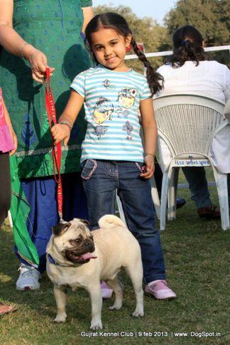 9th pug specialty vadodara, 9th Pug Specialty Vadodara, DogSpot.in