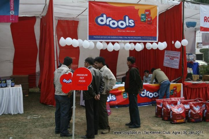 ground,sw-31,, Agra Dog Show 2011, DogSpot.in