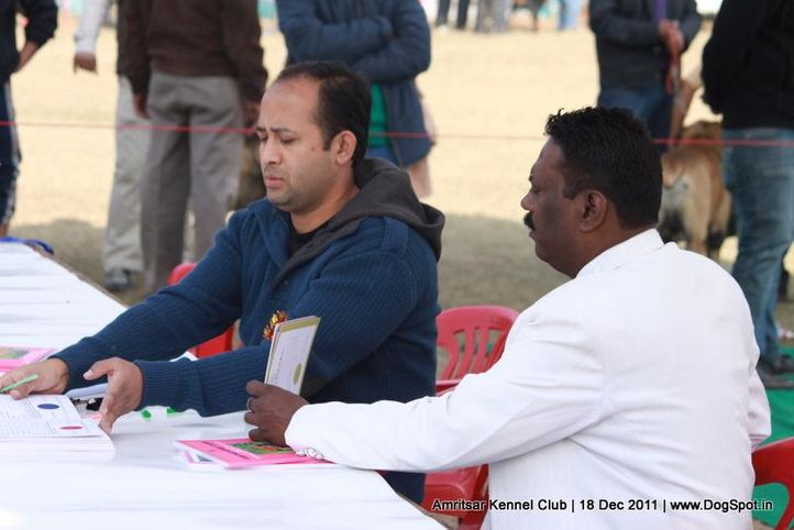 people,sw-46,table,, Amritsar 2011, DogSpot.in