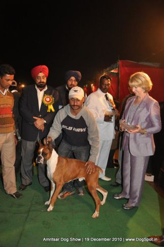 lineup,, Amritsar Dog Show 2010, DogSpot.in