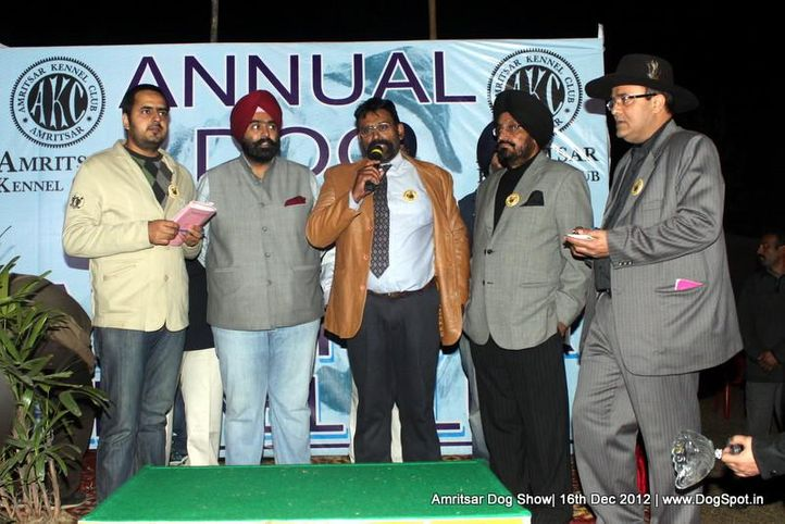 line up,people,sw-65,, Amritsar Dog Show 2012, DogSpot.in