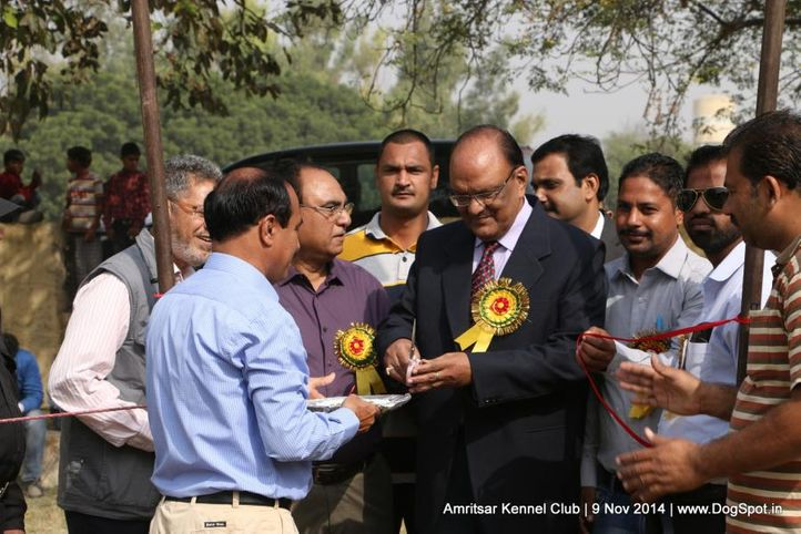 inaugural,sw-135,, Amritsar Kennel Club, DogSpot.in
