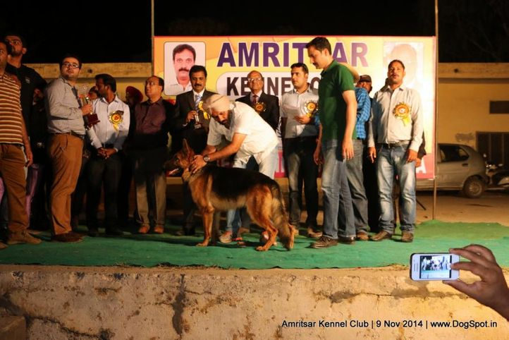 sw-135,, Amritsar Kennel Club, DogSpot.in