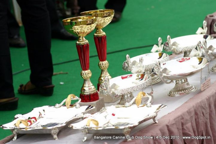 sw-12,trophies, Bangalore 2010, DogSpot.in