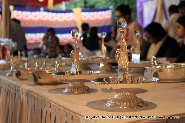 sw-49,trophies,, Bangalore Canine  Club 2011, DogSpot.in